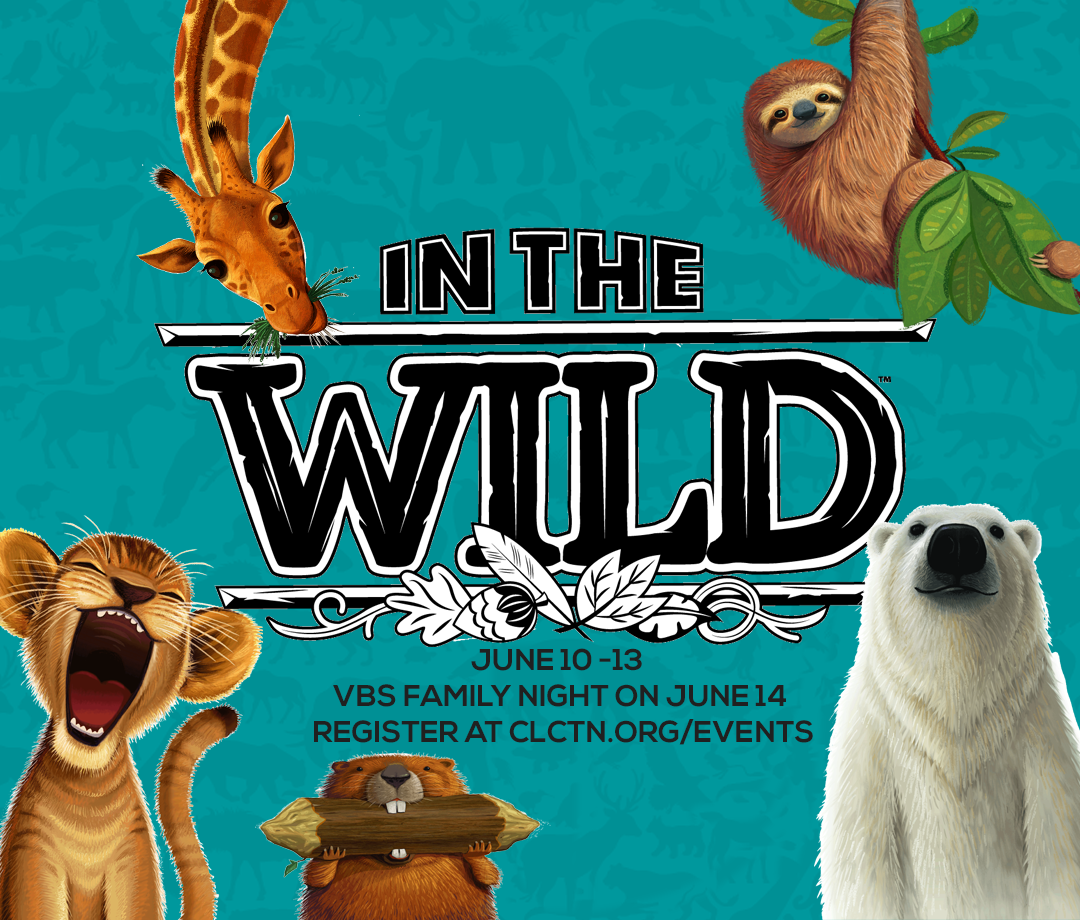 VBS - In The Wild